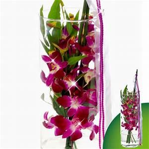 Luftwurzeln Bei Orchideen : orchideenstrau online bestellen orchideen im strau kaufen ~ Frokenaadalensverden.com Haus und Dekorationen