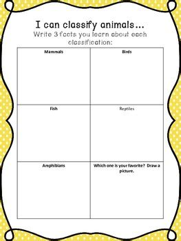 animal classification worksheet by the world in a