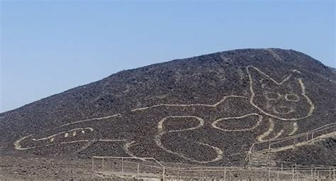 year  nazca lines cat carving discovered
