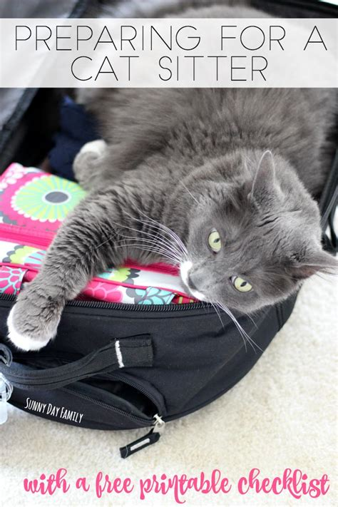 preparing   cat sitter    printable cat