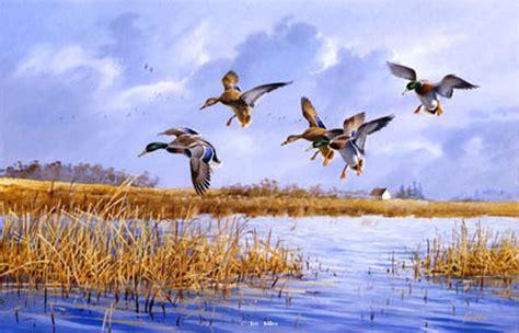 waterfowl paintings