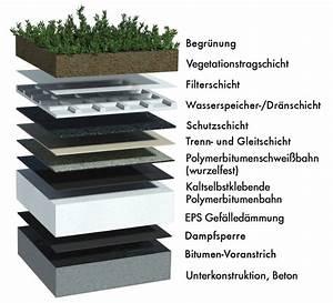 Extensive Dachbegrünung Aufbau : das gr ndach die bitumenbahn ~ Whattoseeinmadrid.com Haus und Dekorationen