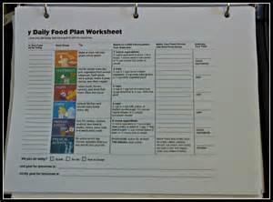 My Daily Food Plan Worksheet