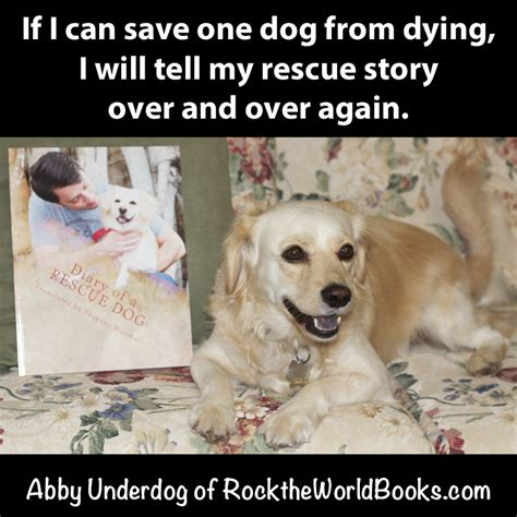 quotes  pets dying quotesgram
