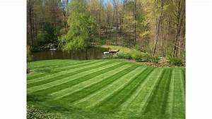 Lawnmowing Striping A Sign Of A Pro