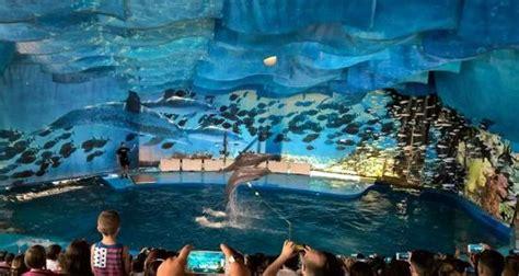 related keywords suggestions for l aquarium de barcelona