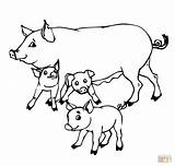 Coloring Pigs Pig Baby Mother Pages Drawing Piglet Cartoon Outline Mom Printable Colouring Super Getdrawings Peppa Cute Supercoloring Adults Adorable sketch template