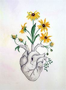 Flowers Drawings Inspiration   Heart  Anatomy Of Heart