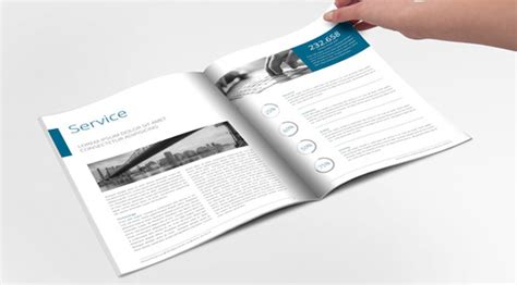 professional accounting brochures templates  companies