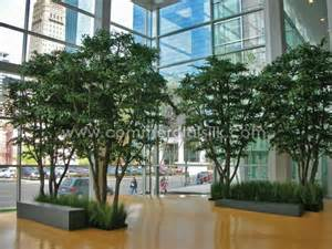 before after skyscraper silk trees for ameriprise building lobby silk plants tool kit