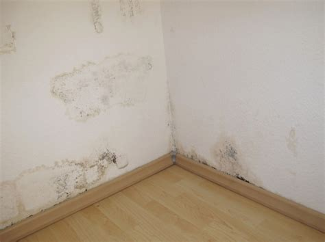enduit mur parpaing interieur enduit mur exterieur parpaing 15 test defficacit233 de la peinture anti humidit233 etancheite