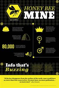 Honey Bee Infographic On Behance