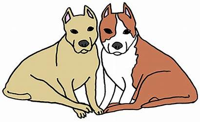 Dogs Clipart Pet Lost Story Dog Short