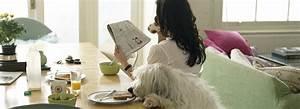 Wohnung Sauber Halten : putztipps sauberes zuhause mit haustieren k rcher ~ Frokenaadalensverden.com Haus und Dekorationen