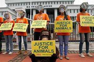Farmers Warned About Increased Activist Activity Friday ...