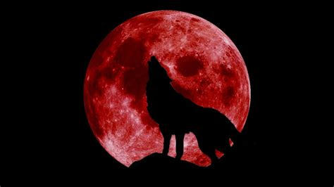 game year   wolf blood moon snippet album preview youtube
