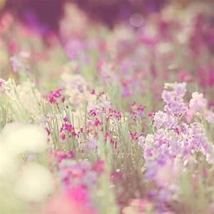 pink and violet vintage flowers   Girly Vintage ...