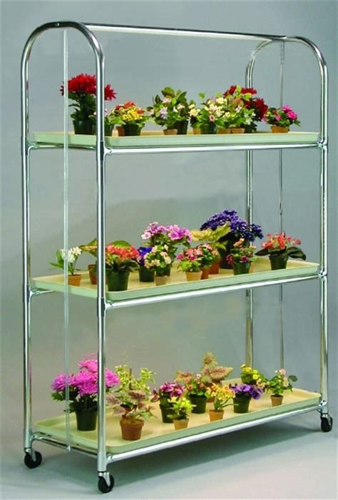 indoor gardening supplies 32 best violets images on