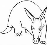 Aardvark Coloring Print Animal Pages Drawing Anteater Printable Views Armadillo Clipart Drawings Freekidscoloringpage Cartoons Total sketch template