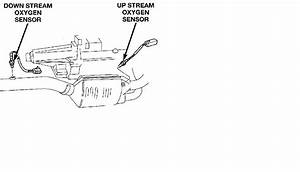 Oxygen Sensor Wiring Diagram 1997 Dodge 1500  Dodge  Auto