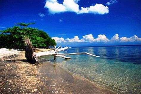 moyo island sumbawa west nusa tenggara