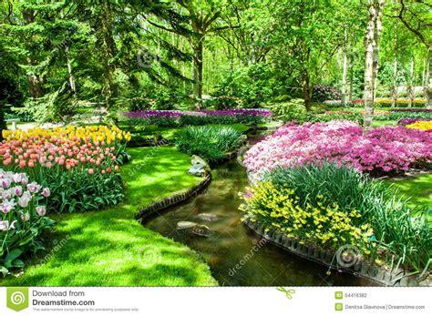 Colorful Spring Flowers In Holland Garden Keukenhof