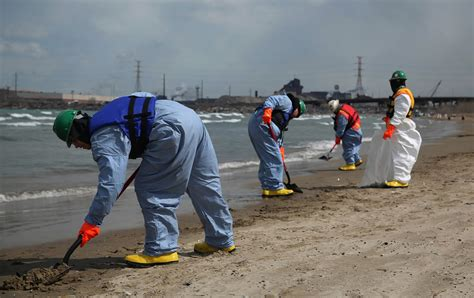 oil company claims oil spills   positive effects