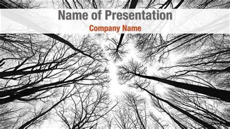Tree Tops Template by Tree Top Powerpoint Templates Tree Top Powerpoint