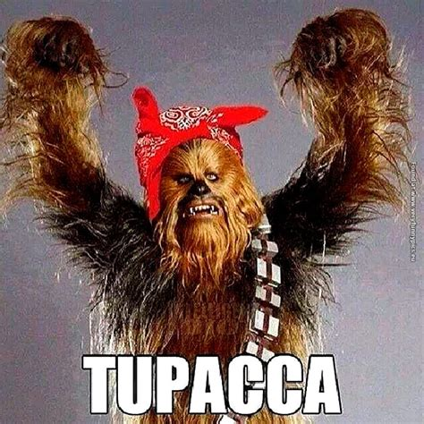 Chewbacca Meme - if you cross tupac and chewbacca you ll get this very funny pics