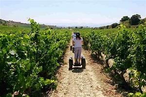 Segway winery tour in Rioja - Laguardia