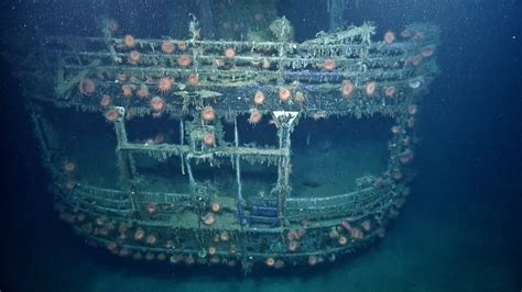 Titanic Sunk By U Boat by Finds A Way The Biology Of Shipwrecks Nautilus Live