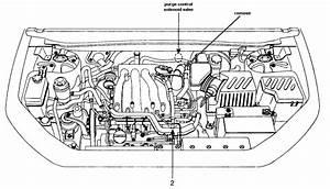 2002 Hyundai Elantra Pics  1 6  Gasoline  Ff  Automatic