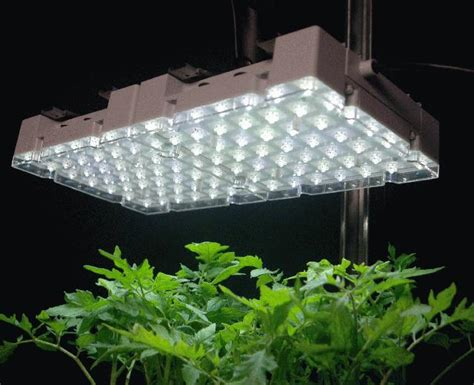 Artificial Light For Plants by Grow Light Reflector On Winlights Deluxe Interior