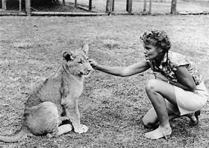Borne Free Lyon : lion tacos in tucson what a disgrace advocacy for animals ~ Medecine-chirurgie-esthetiques.com Avis de Voitures