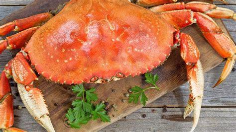 Apalagi kalo di daerah jimbaran yang emang terkenal dengan tempat makan seafood & view lautnya. Penyuka Seafood Pedas ? Yuk Intip Resep Kepiting Saus Padang