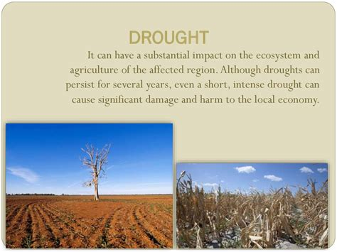 Drought. Interesting facts - online presentation