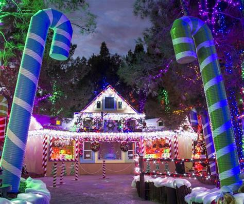 Magical Forest Celebrates 25 Years Of Spreading Holiday