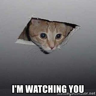 Im Watching You Memes - i m watching you ceiling cat meme generator