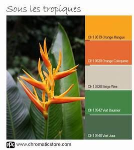 les 25 meilleures idees de la categorie cuisine en palette With beautiful palette de couleur peinture murale 8 diy une palette en bois transformee en deco murale
