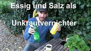 Unkrautbekämpfung Mit Essig : unkrautvernichter selber herstellen essig salz erlaubt ~ A.2002-acura-tl-radio.info Haus und Dekorationen