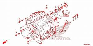 Front Crankcase Cover  Trx250tm  For Honda Fourtrax 250