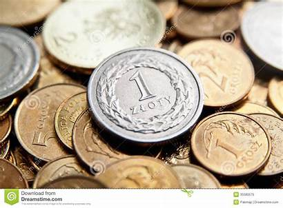 Polish Zloty Currency Coins Penny Royalty Money