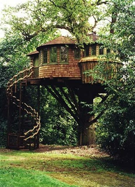 pretty tree houses the world s 15 most stunning tree houses most beautiful