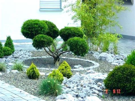 Vorgarten Baum Immergrün by Baum Im Vorgarten Pflanzen