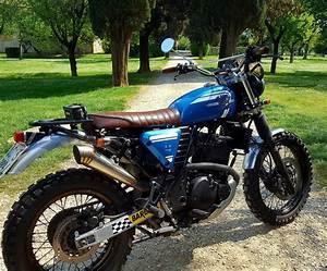 Suzuki Freewind 650 : suzuki xf650 freewind scrambler bikebound ~ Dode.kayakingforconservation.com Idées de Décoration