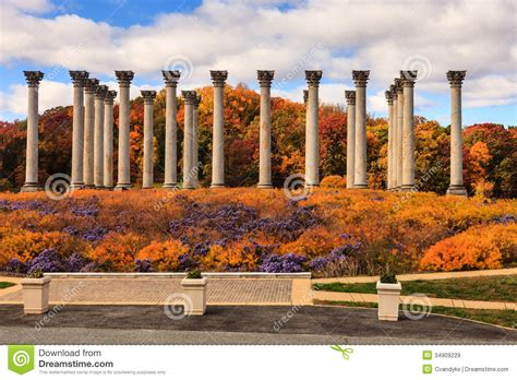 dc arboretum washington dc national capitol columns in autumn royalty free stock images image 34909229