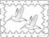 Hummingbird Pages Coloring Printable Birds Drawing Template Hummingbirds Adult Cool2bkids Adults Cartoon Throated Ruby Templates Getdrawings Cute Getcoloringpages sketch template