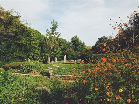 athens botanical gardens escapes these are the 8 best parks in athens the