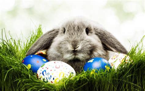 Lieldienas - kāpēc olas, zaķis, šūpoles? - Puaro.lv