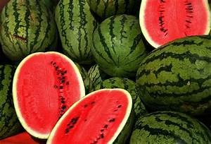 Watermelon | scienceandfooducla